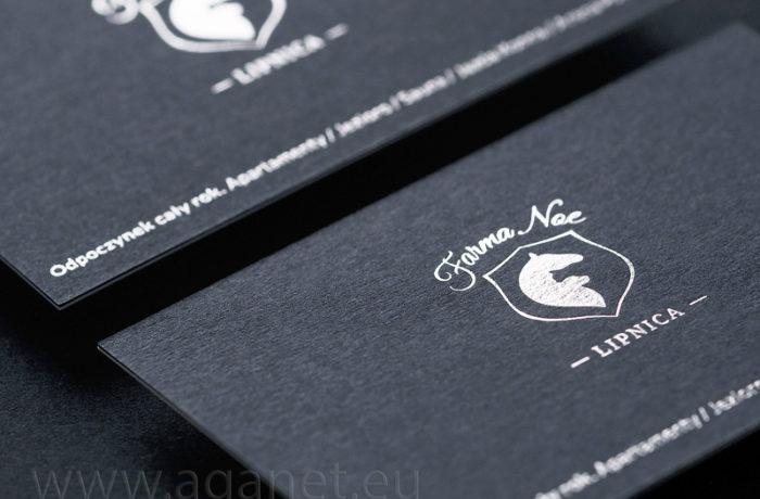 Wizytówki granatowo-srebrne